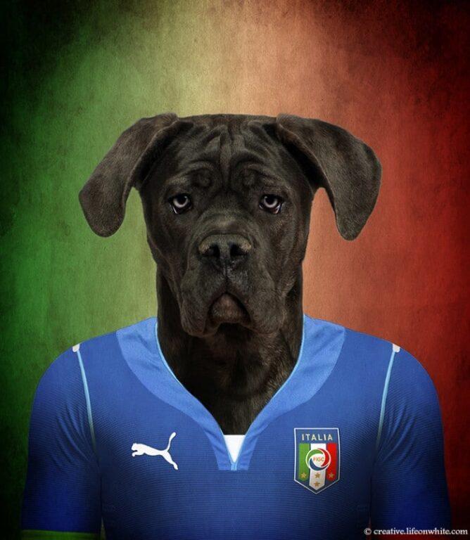 todasraças de cachorrros do mundo - Itália