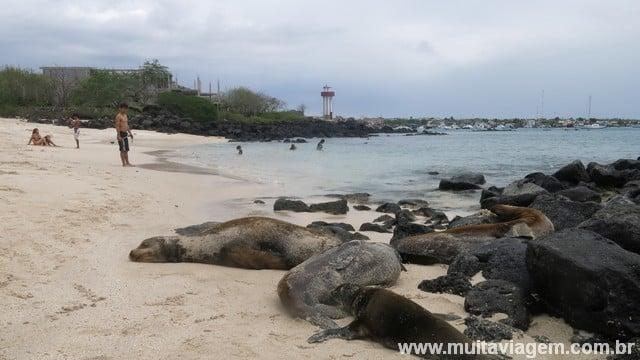 animais galápagos