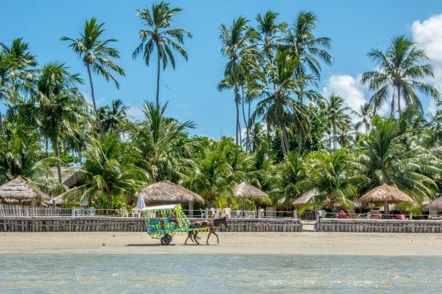 Praias Tamandaré - Ipojuca PE
