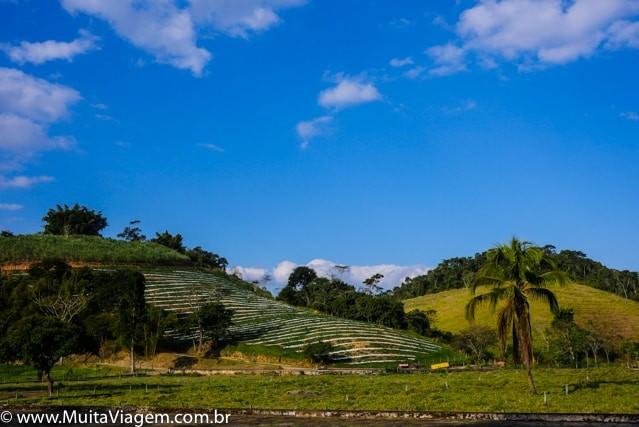 fazenda do vale do café